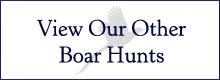 Boat Hunting