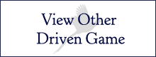 View Other Driven Game